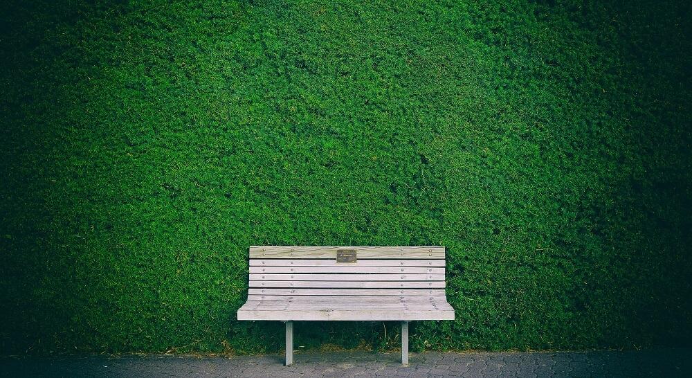 Sitzbank vor grüner Hecke